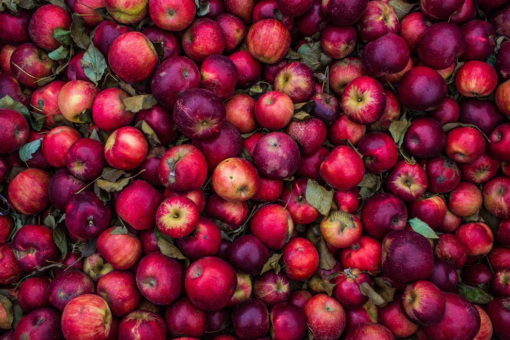 apple cider vinegar for natural beauty