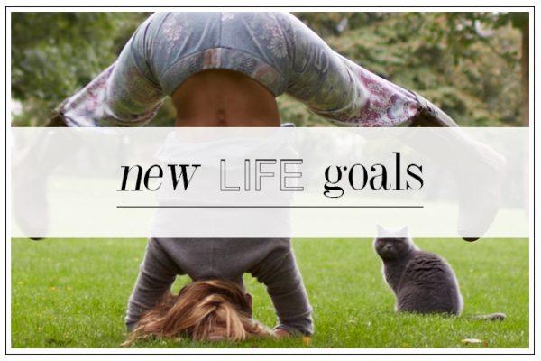 NEW LIFE GOALS