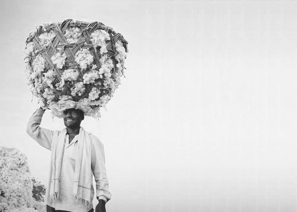 People Tree Cotton