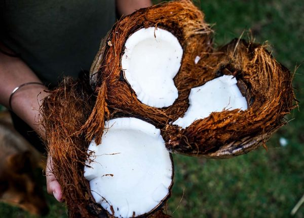 Four ways to use coconut