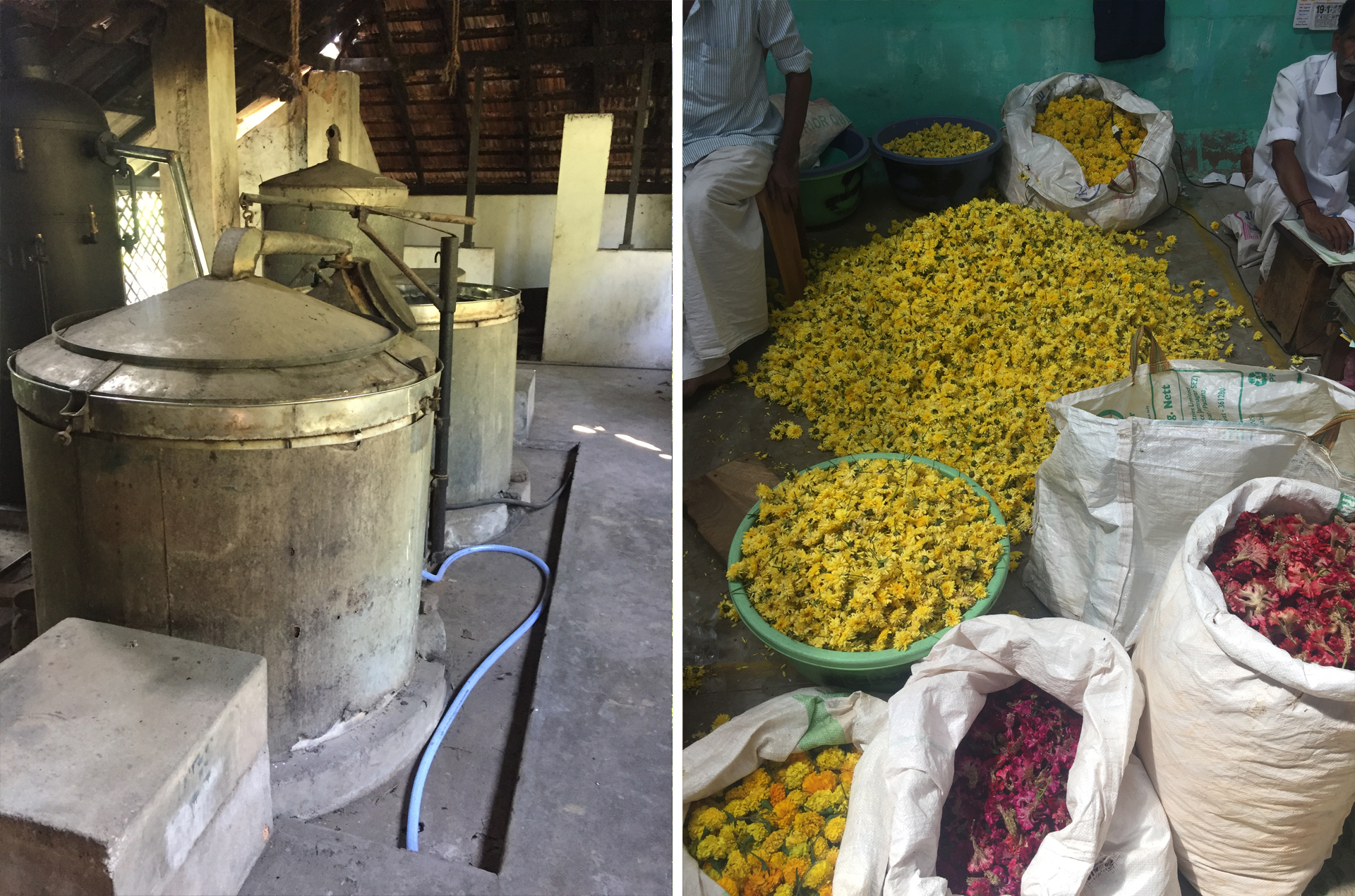 Natural Body Products | Distillation Units at Essential Oil Research Centre & Flower Market | Natural Bodycare Products