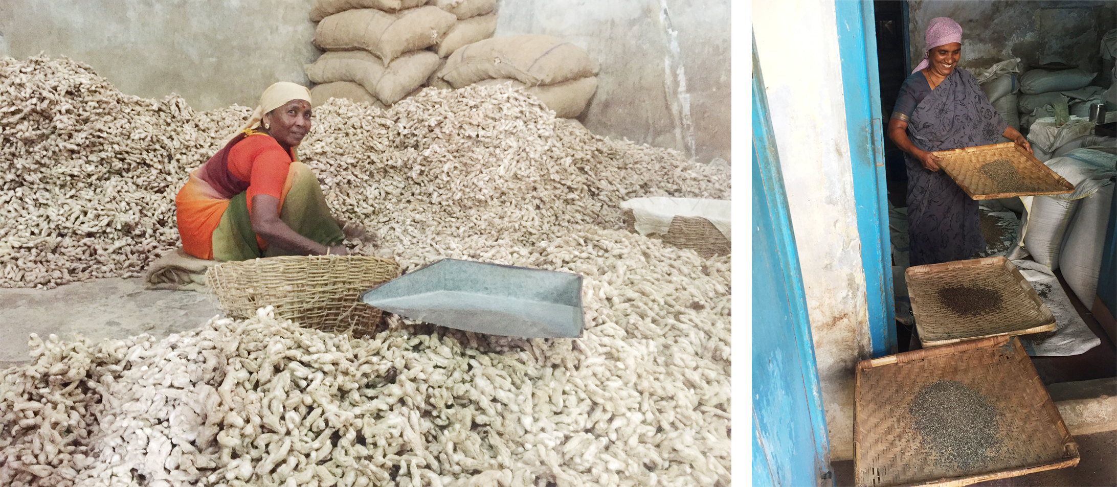 Natural Body Products   Ginger drying house and black pepper drying India