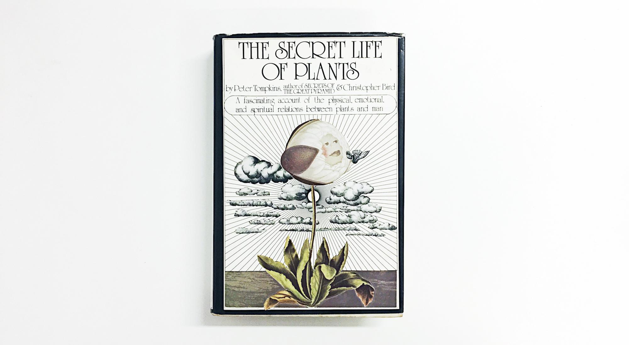 Secret Life of Plants Cover Flat Lay