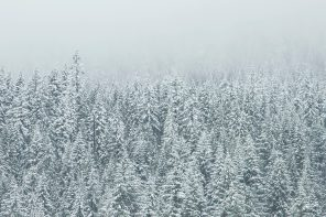 WINTER ATTUNEMENT: How to Hibernate With Our Natural Beauty